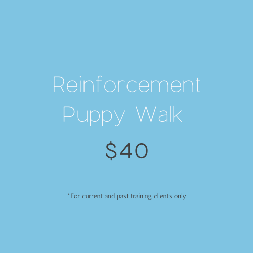 Reinforcement Puppy Walk