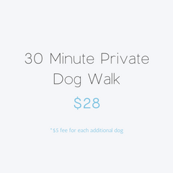 30 minute Private Dog Walk