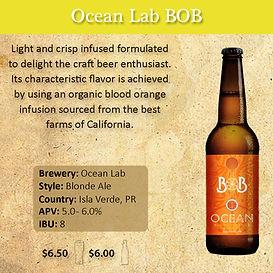 Ocean Lab BOB 2 x 2.jpg