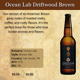Ocean Lab Driftwod Brown 2 x 2.jpg