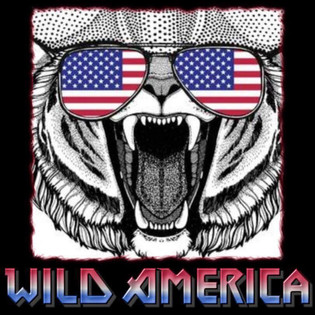 WILD AMERICA to release debut album October 19th : Streaming 'Gasoline'
