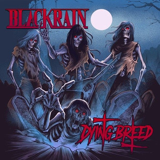 BLACKRAIN 'Dying Breed' Album Review