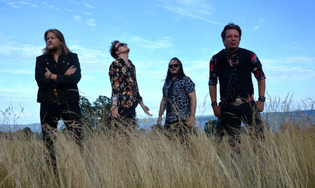 """THE STRIDERS release new album """"Out of the Blues"""""""