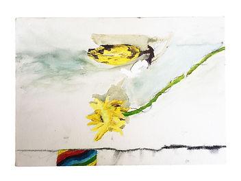 flor arcoiris banana.jpg