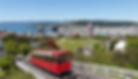 Wellington_edited.png
