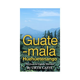 Guatemala Micro Lot   12 oz