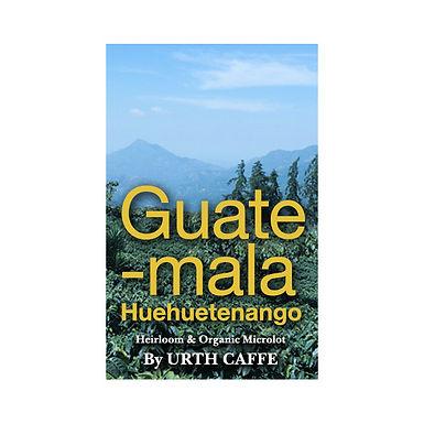 Guatemala Micro Lot | 12 oz