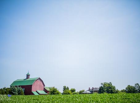Fields on West Lake Wedding | Stephanie & Jamie | Barn Wedding | Love Photos | Prince Edward Cou
