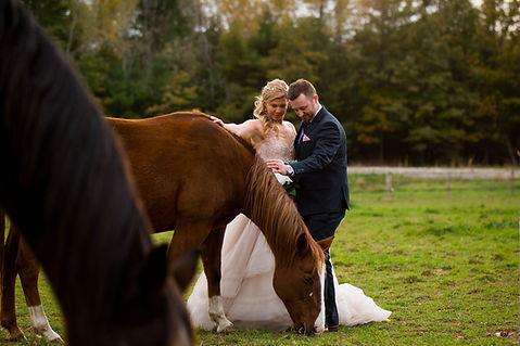 Whispering Springs Wedding-1108.jpg