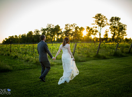Holland Marsh Winery Wedding | Jenn & Justin | Ontario Vineyard Wedding | Love Photos | York Reg