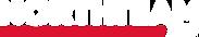 Logo Northteam (blanco).png