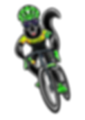 ARTE SPEED BIKE.png