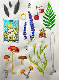 witch'sCollection - Anabell Mazzan.jpg