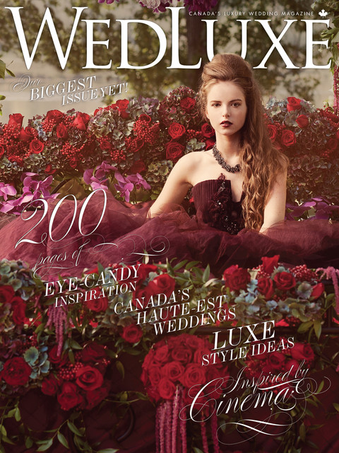 WedLuxe Magazine Feature - Meringues