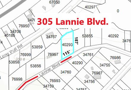 305 Lannie plat 02.png