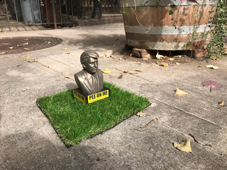 Trumpee Stump on eBay