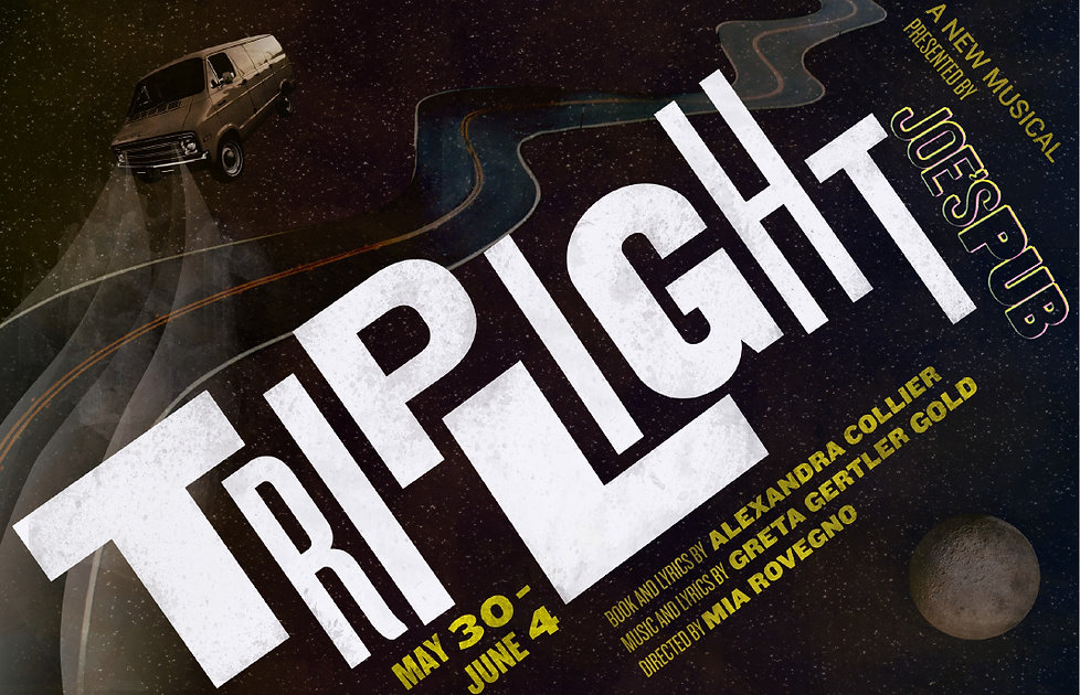 TripLight poster design by Sara Gable