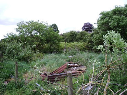 Possible WWII Bunker in field sloping up
