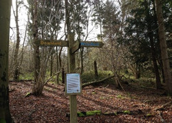 start of the trails
