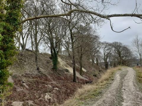 Old Sarum track