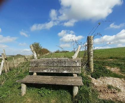Bench at Salterton (1).jpg