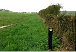 approach to Avon Farm.JPG