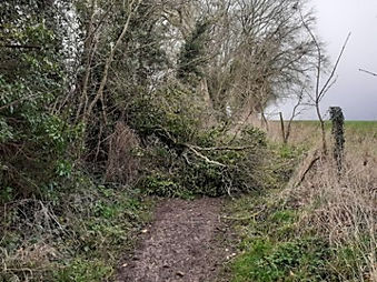 Monarch's Way blocked Feb 2020.jpg