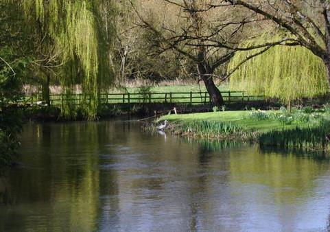 Heron nr the Mill Lane Bridge