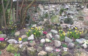 corner rock garden