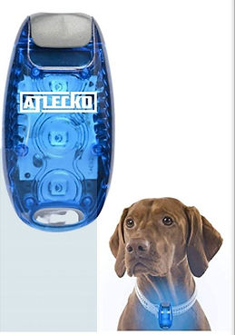 dog collar LED light.jpg