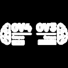 Logo_OV3OV4_wit.png