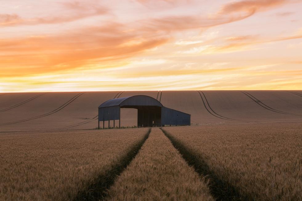Dutch Barn Sunrise