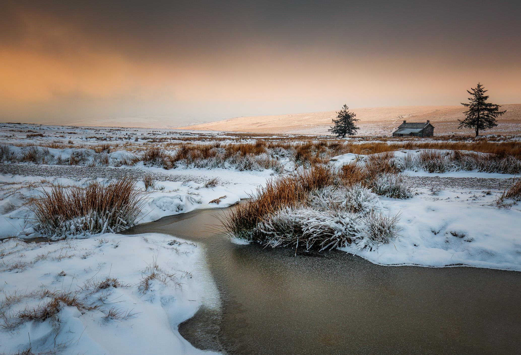 The Frozen Moor