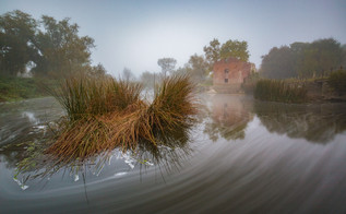Mist Of The Mill