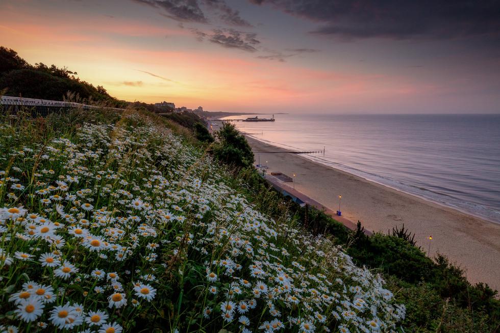 Bournemouth Dawn