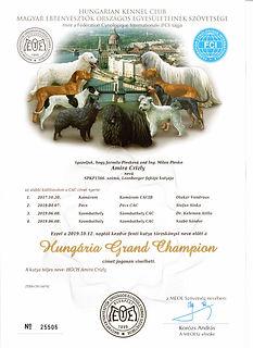 Hungária_Grand_Champion_AMIRA_Crizly.jpg