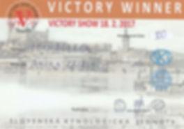 bkpam2214061_victoryshowampinampinovsr20