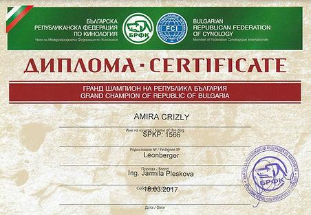 Grand Champion Bulgaria.jpg