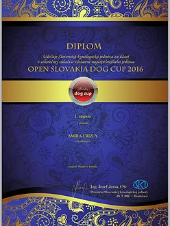 Slovakia Dog Cupbkpam2214061_img_5854.pn