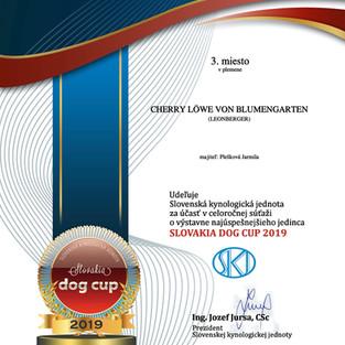 Slovakia Dog Cup 2019 - Leonberger