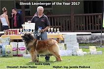 Slovak Leonberger off the Year 2017.jpg