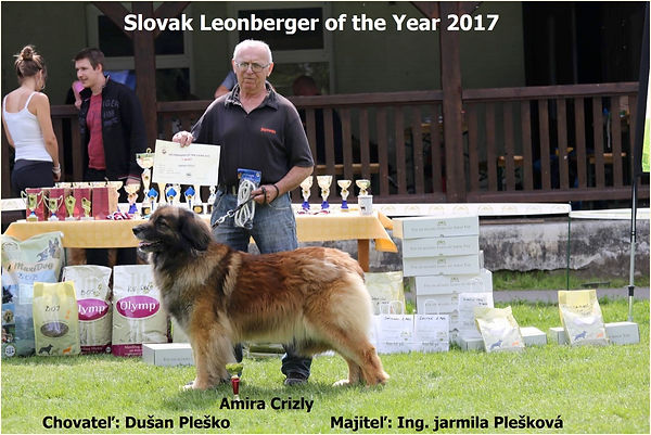 Slovak Leonberger off the Year 2017.jpg