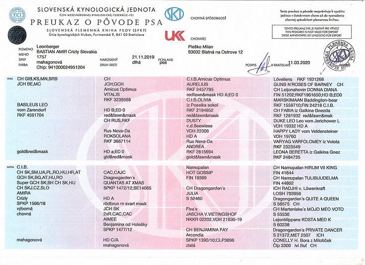 Leonberger Bastian Amir Crizly Slovakia.