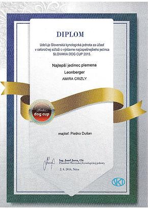 Slovakia Dog Cup 3.jpg