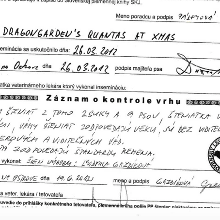 Klamárka Ľudmila Gazdíková - Hospodárka SLK