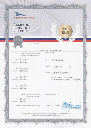 chAMPION SLOVENIJE V LEPOTI  _  AMIRA CR
