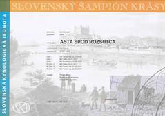 Asta Champion SR.jpg