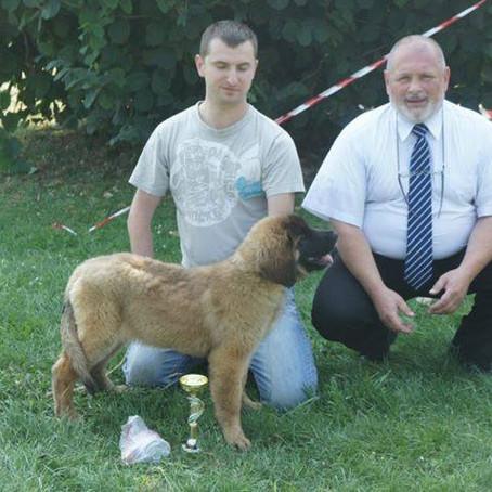 Slovak Leonberger Club Dog Show Cana, SLOVAKIA - 02. 09. 2012