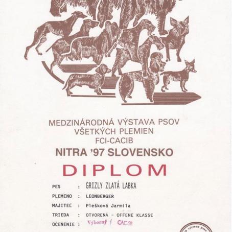 IDS Nitra, SLOVAKIA - 08. 06. 1997