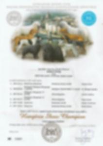 Hungaria Show Champion.jpg